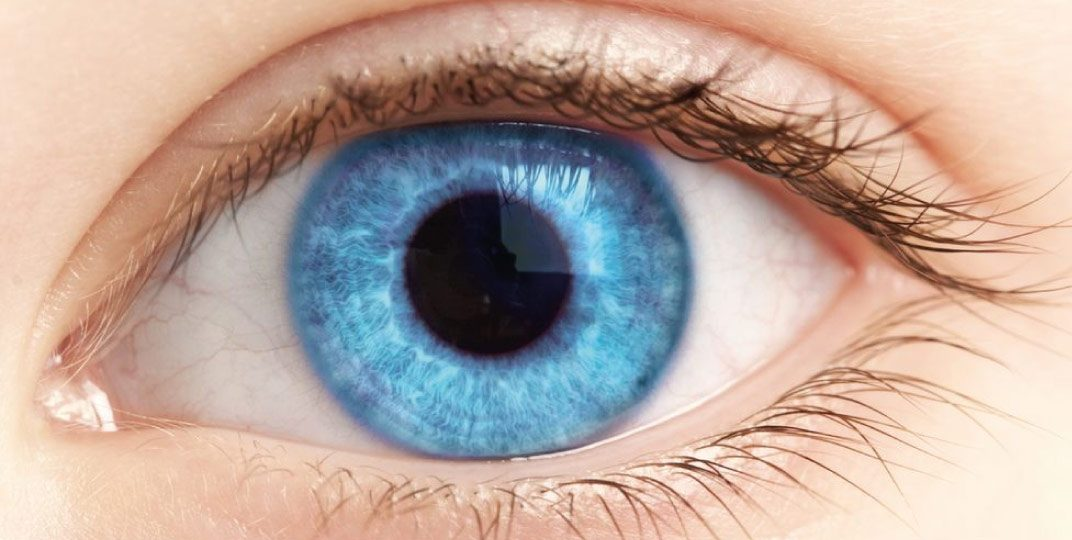 cirurgia-retina-thumb-img